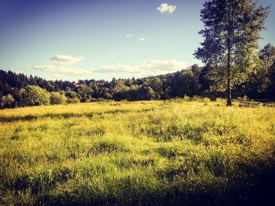 Hestejordene ved Rødtvedt i Lillomarka - Oslomarka - Fantastiske marka
