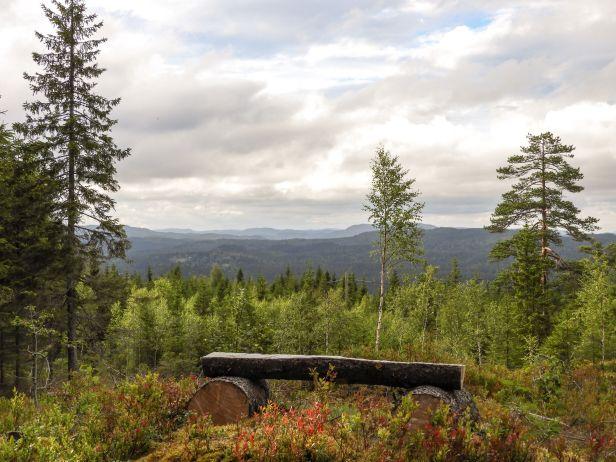 Utsikt fra Skjennungsåsen - Oslomarka - Nordmarka - Fantastiske marka