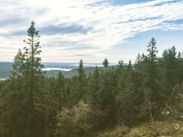 Utsikt fra Mellomkollen - Oslomarka - Nordmarka - Fantastiske marka