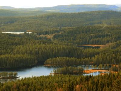 Utskt over Øyungen og Gåslungen - Oslomarka - Nordmarka - Fantastiske marka