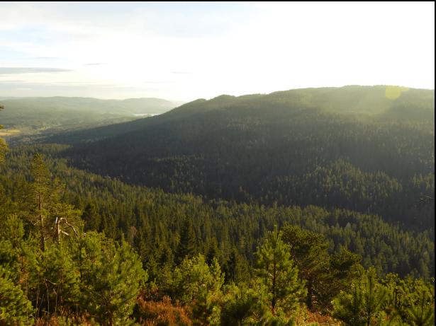 Utsikt mot Lyberga og Båhushøgda i Maridalen - Oslomarka - Nordmarka - Fantastiske marka