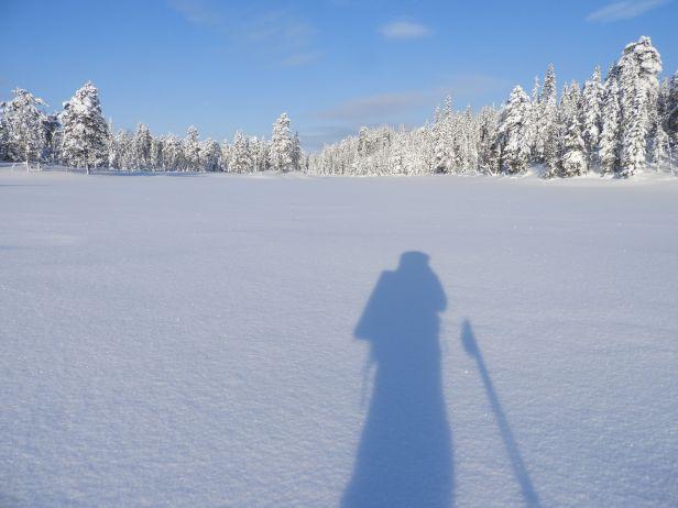 Skyggeportrett en vinterdag - Oslomarka - Nordmarka - Fantastiske marka
