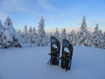 Truger er en flott måte å komme seg ut i naturen på - Oslomarka - Nordmarka - Fantastiske marka