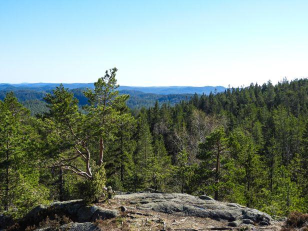 Utsikt over Østmarka fra Ramstadslottet - Oslomarka - Fantastiske marka
