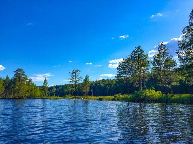 En av øyene i Øyungen - Oslomarka - Nordmarka - Fantastiske marka