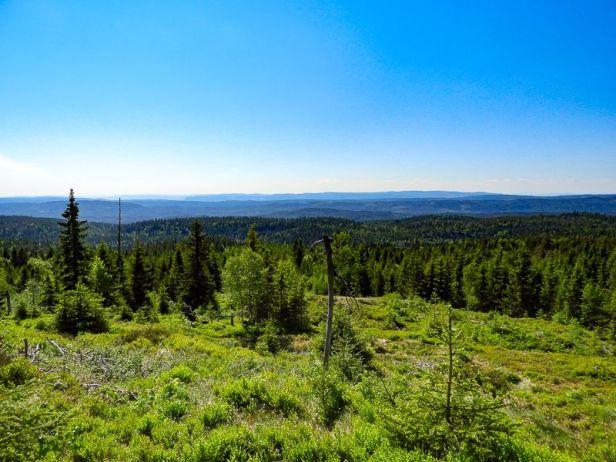Panoramautsikt fra Vidvangshøgda - Oslomarka - Krokskogen - Fantastiske marka