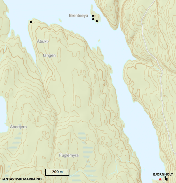 Oversikt over teltplasser sør i Bjørnsjøen - Oslomarka - Nordmarka - Fantastiske marka