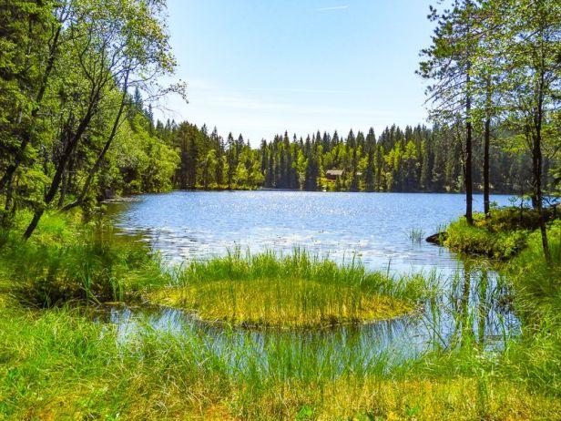 Utsikt over Søndre Langvann - Oslomarka - Lillomarka - Fantastiske marka
