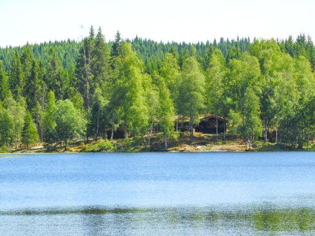 Svartvannshytta i Vestmarka - Oslomarka - Fantastiske marka