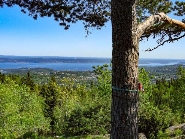 Utsikten mot Oslofjorden fra Bergsåstoppen - Oslomarka - Vestmarka - Fantastiske marka
