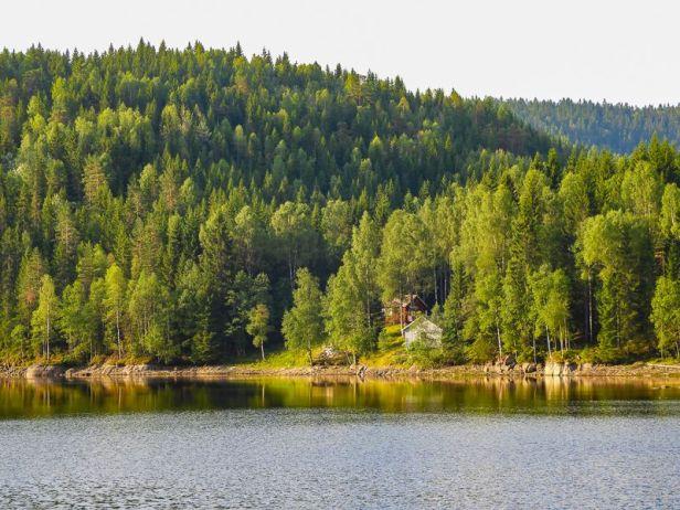 DNT hytta Røyrivannskoia i Østmarka - Oslomarka - Fantastiske marka