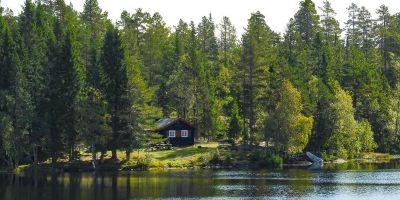 DNT hytta Råbjørnhytta - Oslomarka - Romeriksåsene - Fantastiske marka