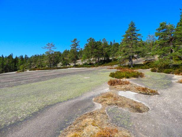 Svaberget på Blåfjell i Kjekstadmarka - Oslomarka - Fantastiske marka