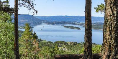 Utsikten mellom trærne mot Steinsfjorden og Finnemarka fra Tiurtoppen - Oslomarka - Krokskogen - Fantastiske marka