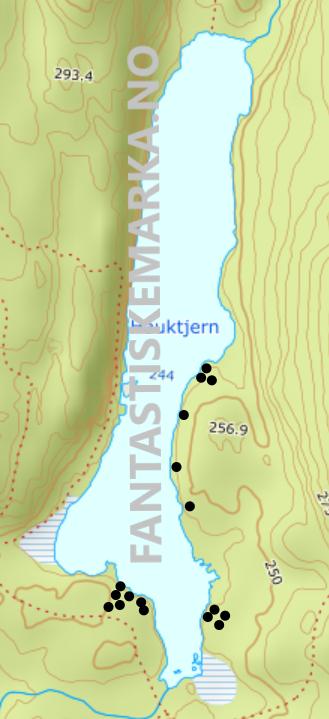 Leirplasser ved Hauktjern i Østmarka - Oslomarka - Fantastiske marka