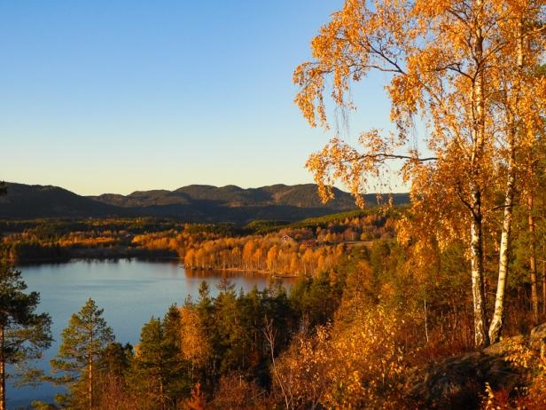 Utsikt mot Maridalsvannet med Nordmarka i bakgrunnen - Oslomarka - Nordmarka - Fantastiske marka