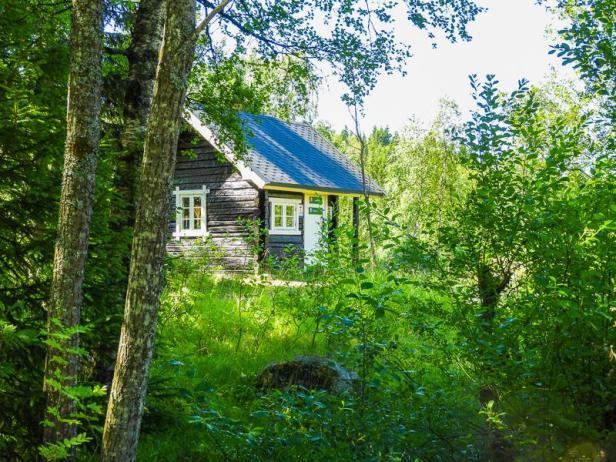 Røverhula i det grønne - Oslomarka - Lillomarka - Fantastiske marka